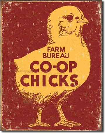 Co-Op Chicks Tin Sign | Man Cave Authority | 1365