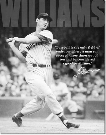 Ted Williams Baseball Tin Sign | Man Cave Authority | 1507