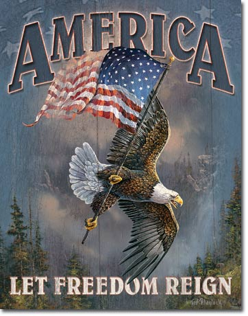 "America ""Let Freedom Reign"" Tin Sign 