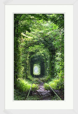 Enchanted Tunnel