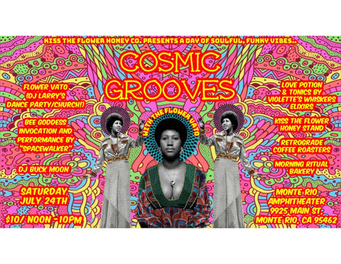 cosmic grooves dance party
