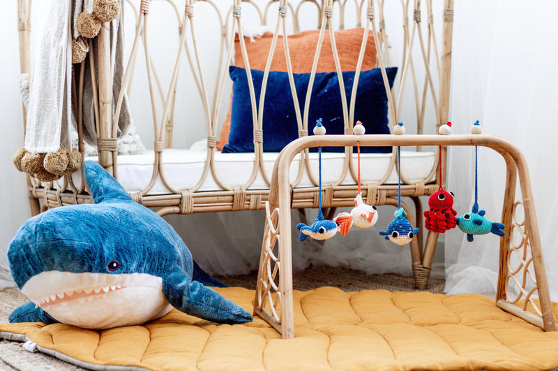 Marine Dreams Baby Playgym