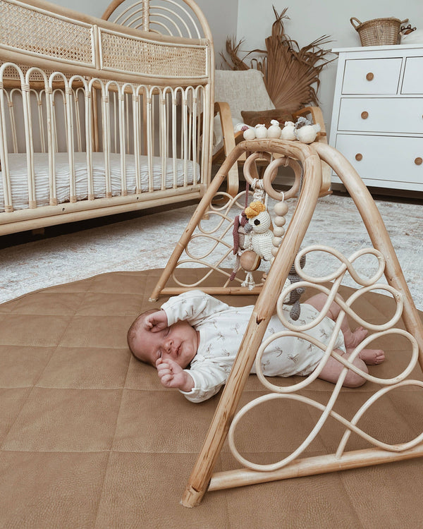 Aussie Adventures Baby playgym