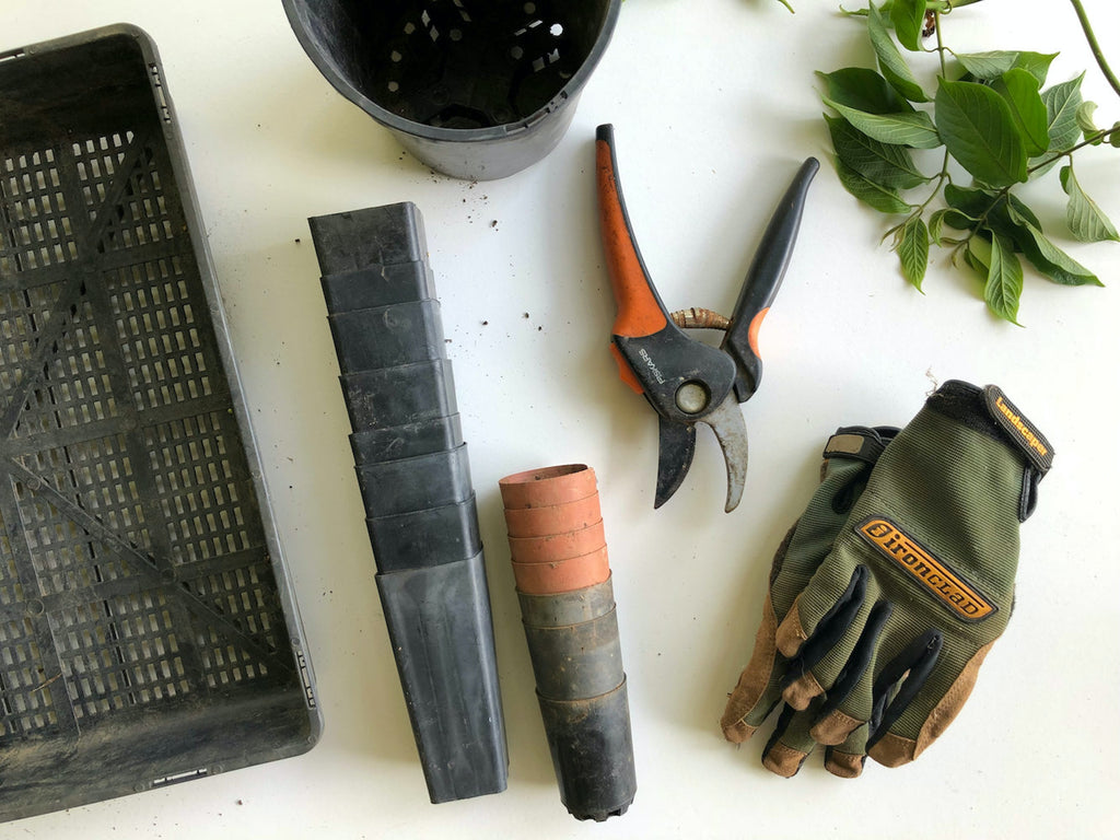 Gardening Tools: What You Need To Start Your Own Garden