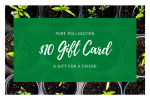 Open image in slideshow, Pure Pollination Gift Card