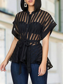 Plain See-Through Long Sleeve Mid-Length Blouse