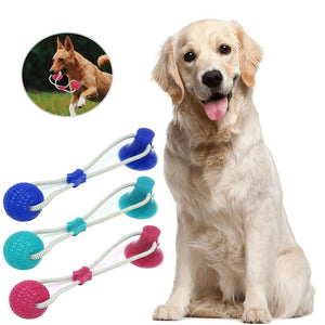 Dog Interactive Suction Cup Push Toys