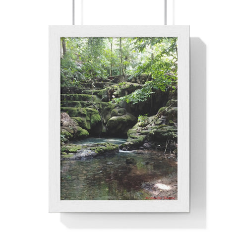 Art ~ Premium Framed Vertical Poster