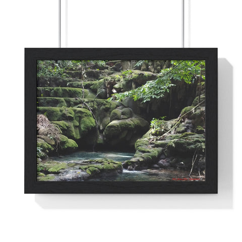 Art ~ Premium Framed Horizontal Poster