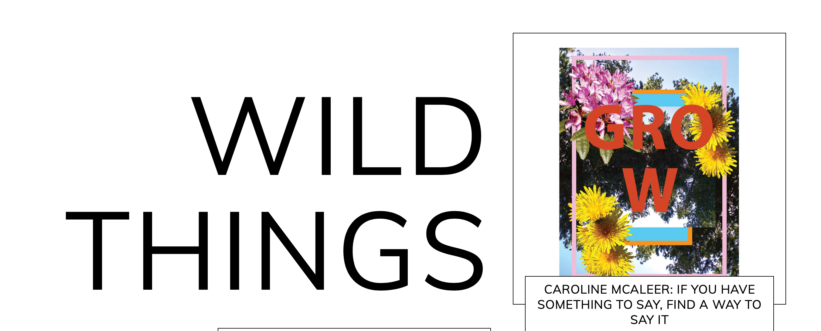Wild Things Ezine