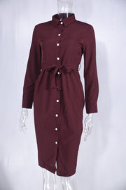 Fashion Long Sleeve Buttons Shirt Dress