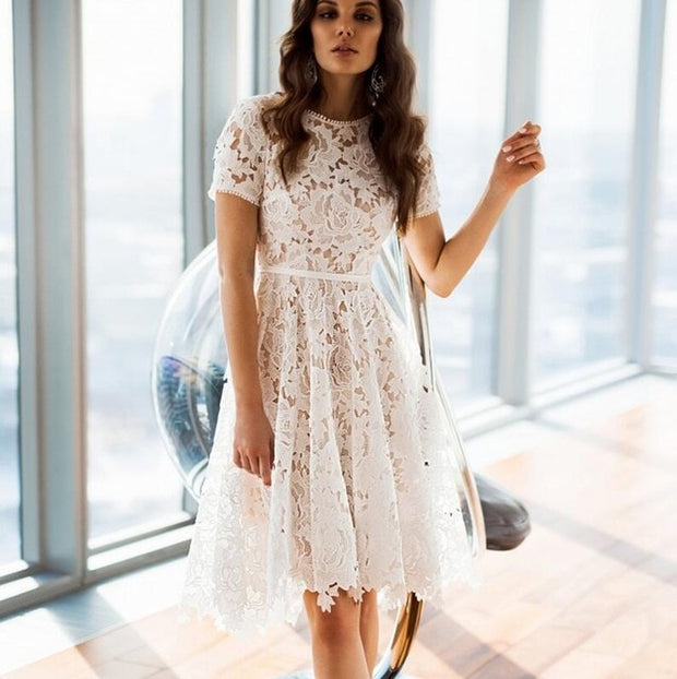 Lace Embroidered A-line Dress