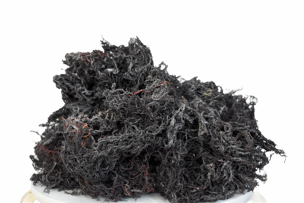 Wholesale Purple Sea Moss Raw