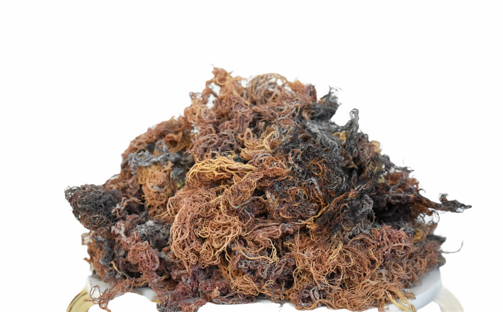 Wholesale Multi Sea Moss Raw