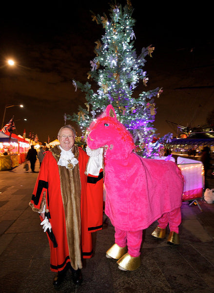 Two Person Panto Horse Mad World Fancy Dress