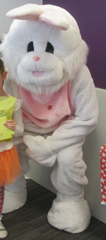 Easter Bunny or Rabbit