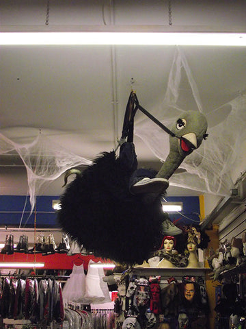 grey ostrich ride costume