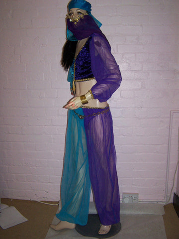 arabian belly dancers costume and veil