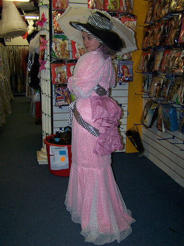 edwardian ladies day dress