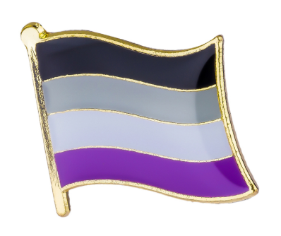 Asexual Pride Flag Brooch Pin