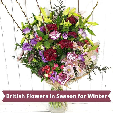 British Flowers in Season for Winter