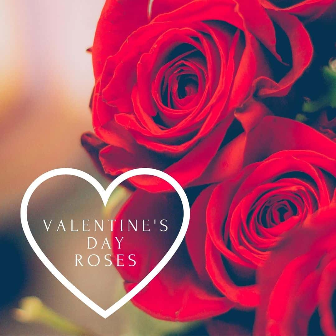 Ethical Red Roses Delivery UK