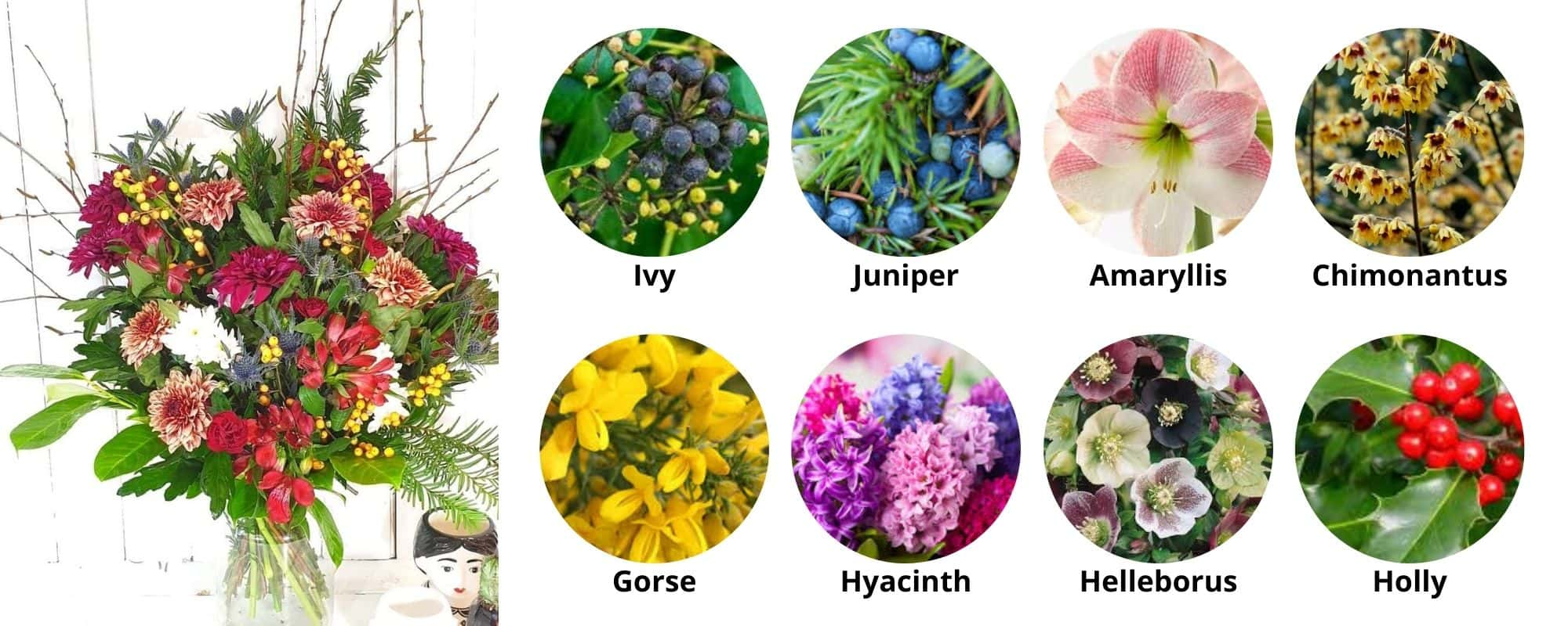 Winter available flowers UK