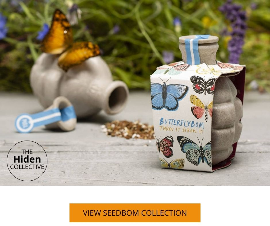 Seedbom for butterfly
