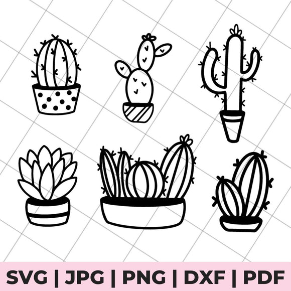 cacti svg bundle