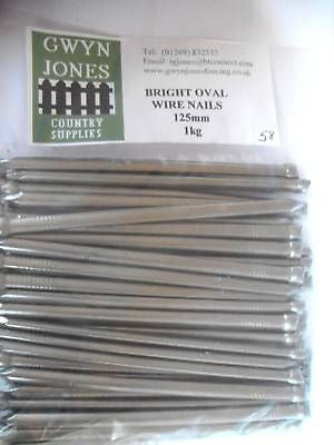 "1kg x 125mm (5"") BAG OF BRIGHT OVAL WIRE NAILS"