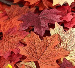 Sweet 50pc Artificial Silk Maple Leaves