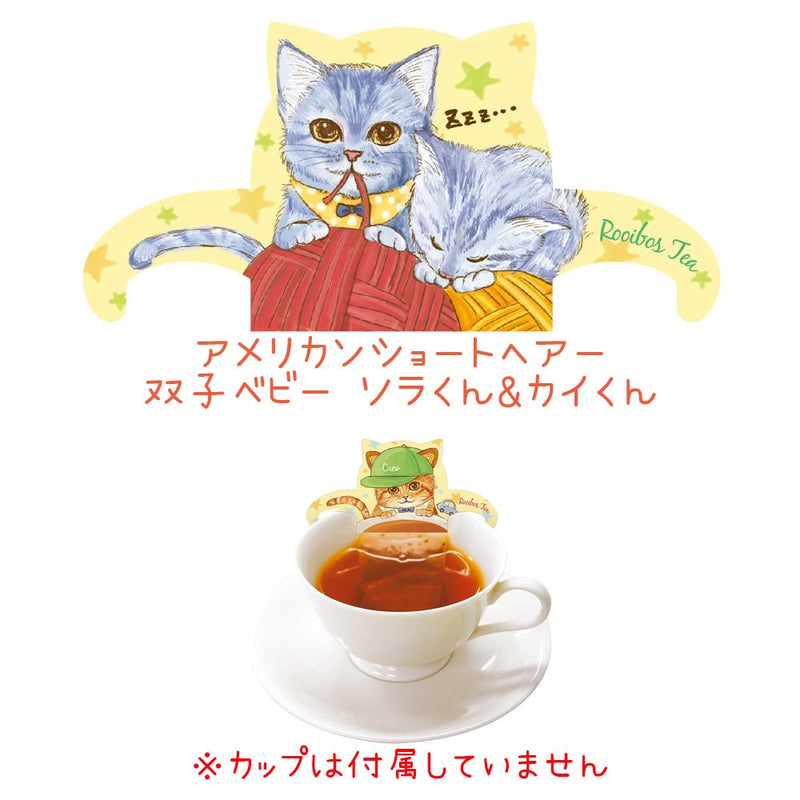 Baby Cat Kitten Tea Rooibos