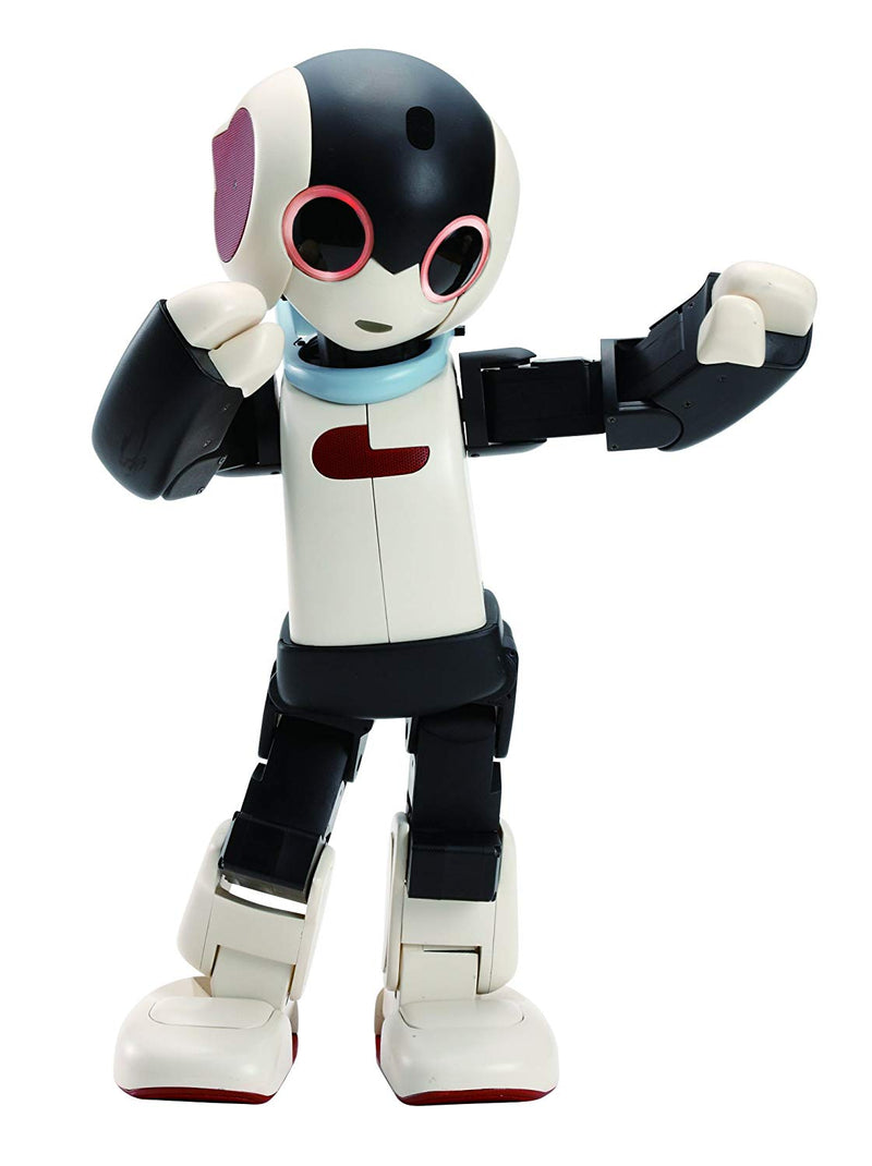 Robi Robot (Assembled Version)