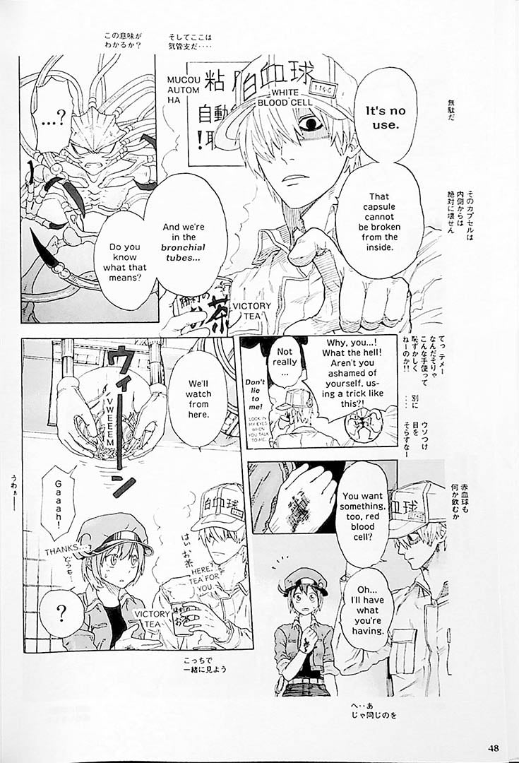 Cells at Work! Bilingual Volume 1 Page 48