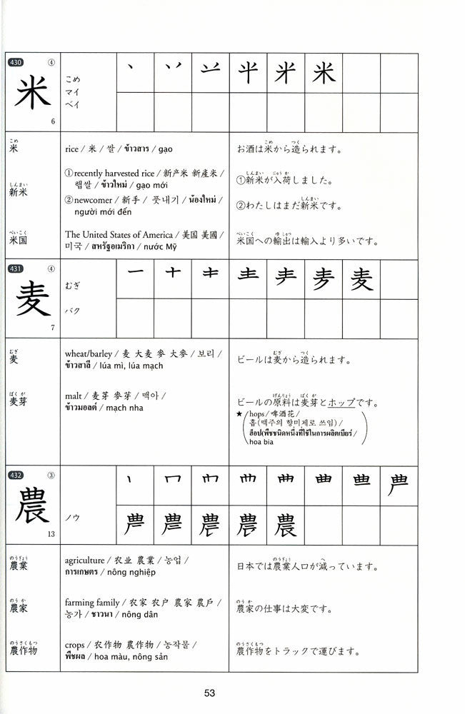 Kanji Practice in 15 Minutes a Day: Beginning and Early Intermediate Characters Book 2 - White Rabbit Japan Shop - 4