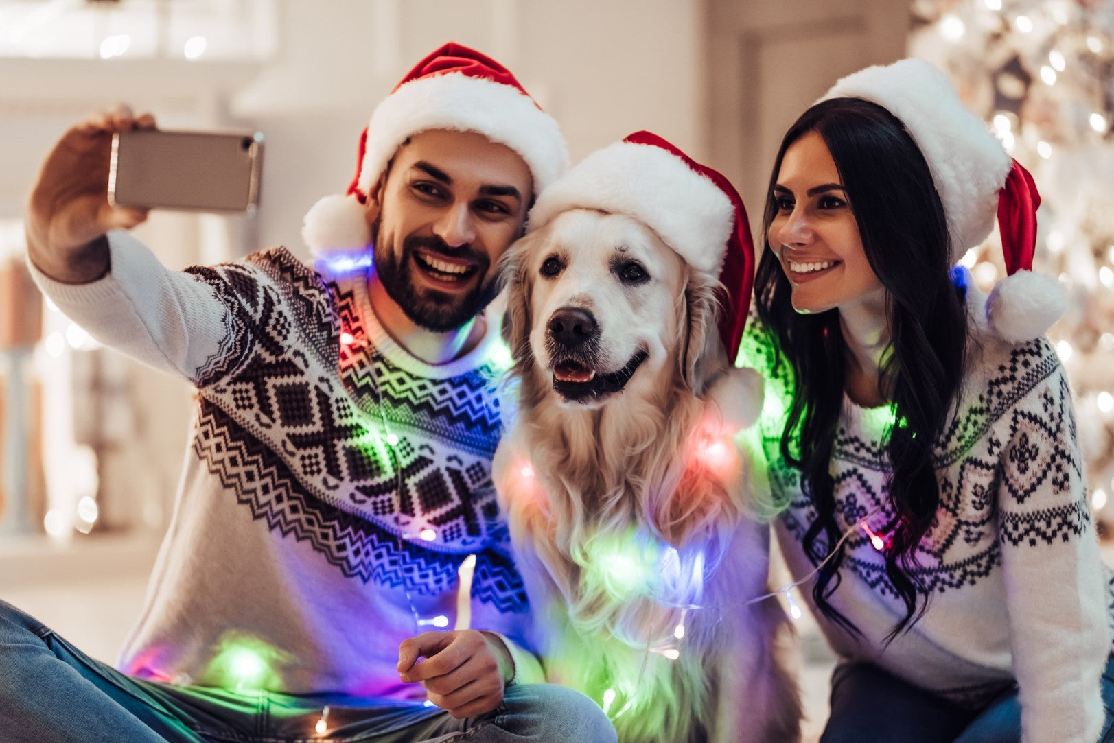8 Holiday Gifts For Your Dog-Obsessed Friend