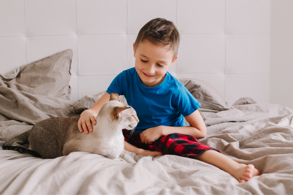 boy sitting on the bed patting cat