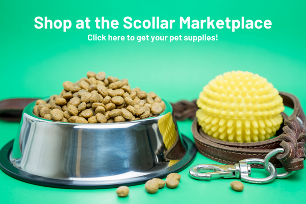 Pet supplies (food, toy and leash) with text to shop at the Scollar Marketplace