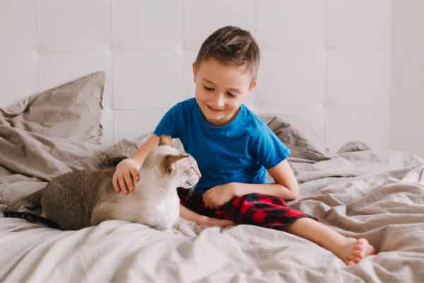boy sitting on bed playing with orange tabby cat