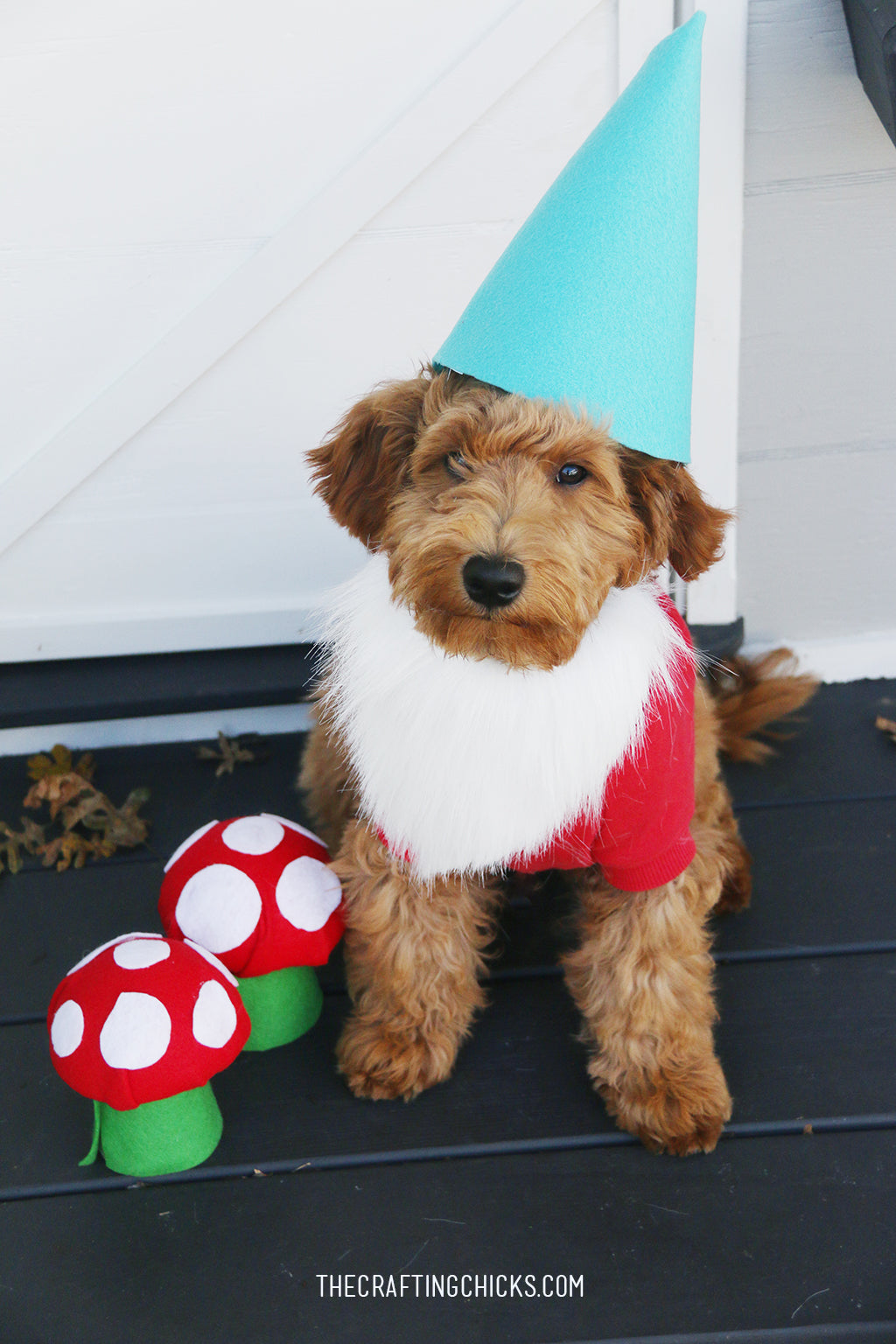 Do it yourself gnome costume for dogs at Crafting Chicks on the Scollar personalized pet marketplace.