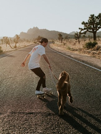 young man skateboarding on a country road with his brown dog running along side him. Photo by Chris Osmond