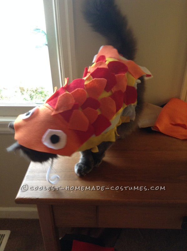 Do it yourself felt fish costume for cats courtesy of coolest homemade costumes on the Scollar personalized pet marketplace.