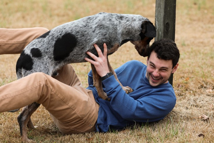 laughing man in blue sweater wrestling with spotted dog in field by cynthia smith on scollar.com