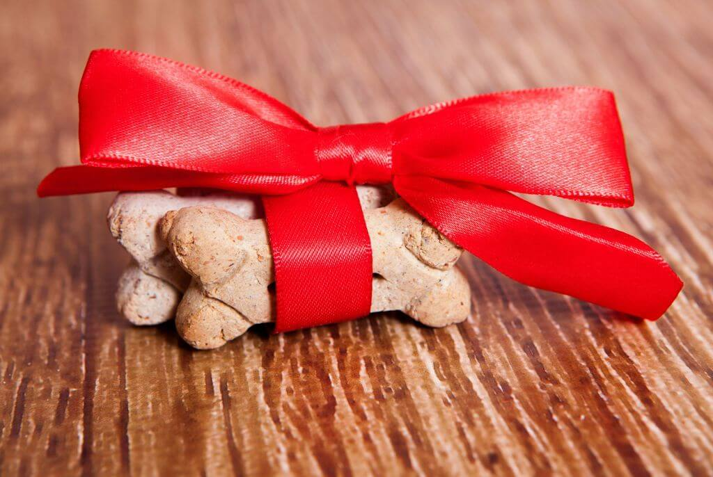 dog treats wrapped in red ribbon