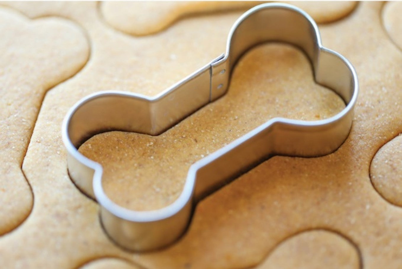 homemade peanut butter cookies for dogs with bone shaped cookie cutter from damndelicious.net