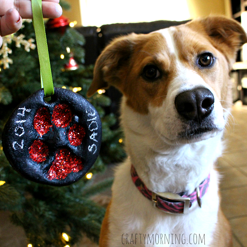 White and tan dog sitting next to salt dough paw print christmas ornament from craftymorning.com