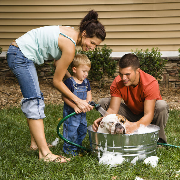 Family washing a dog in a tub in the backyard