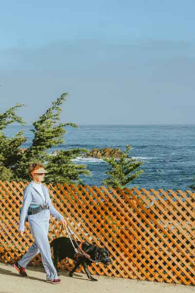 woman in blue track suit walking along beach with dog