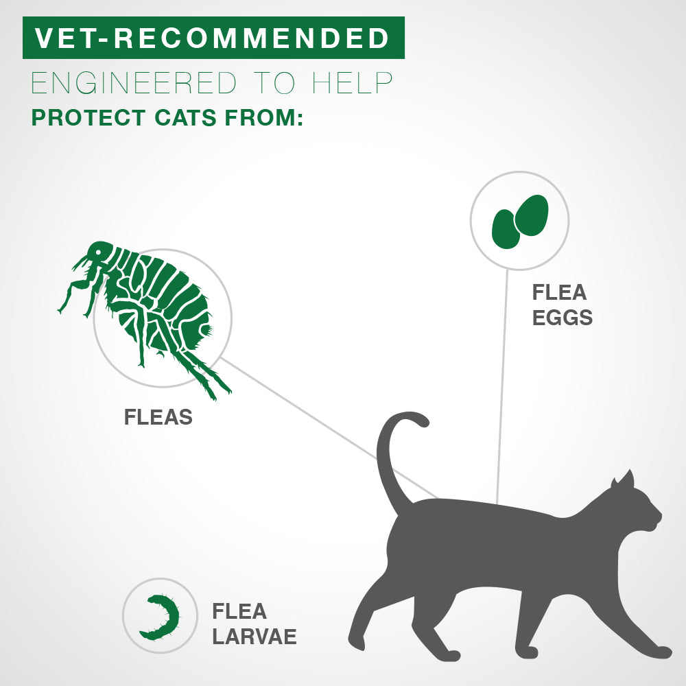 Advantage® II Flea Treatment for Small Cat 4 Dose