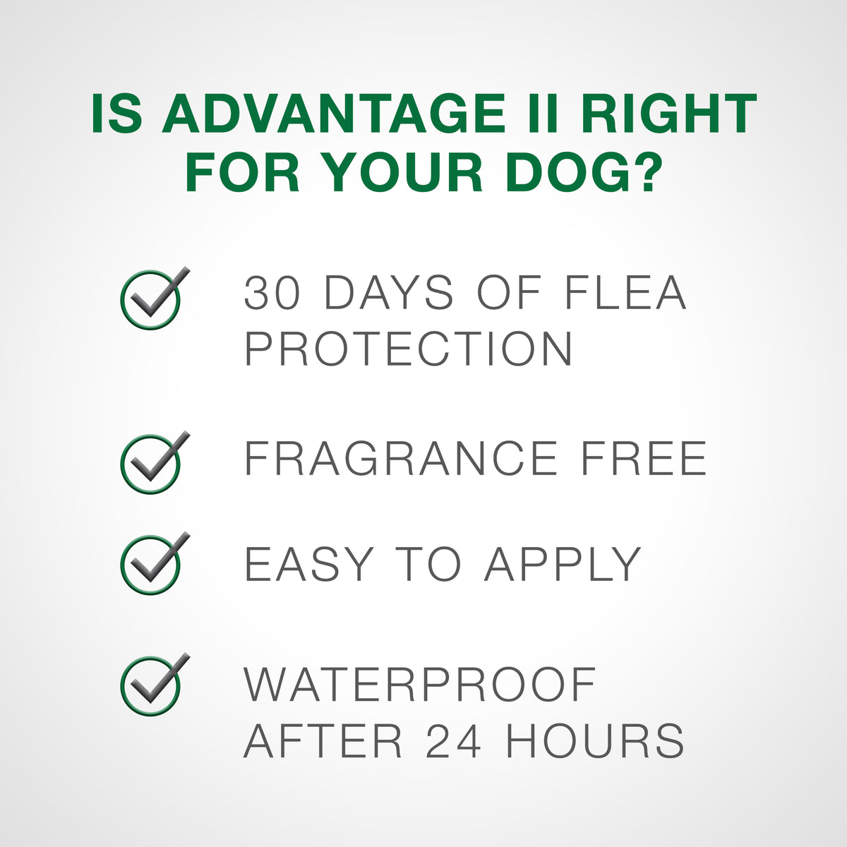 Advantage® II Flea Treatment for Large Dog 6 Dose